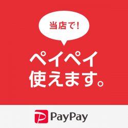 PayPay(オンライン決済)のご利用が可能になりました!